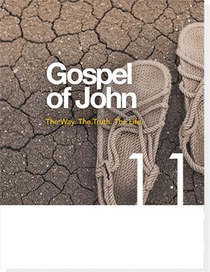gospel of john 2