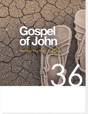 gospel of john 10